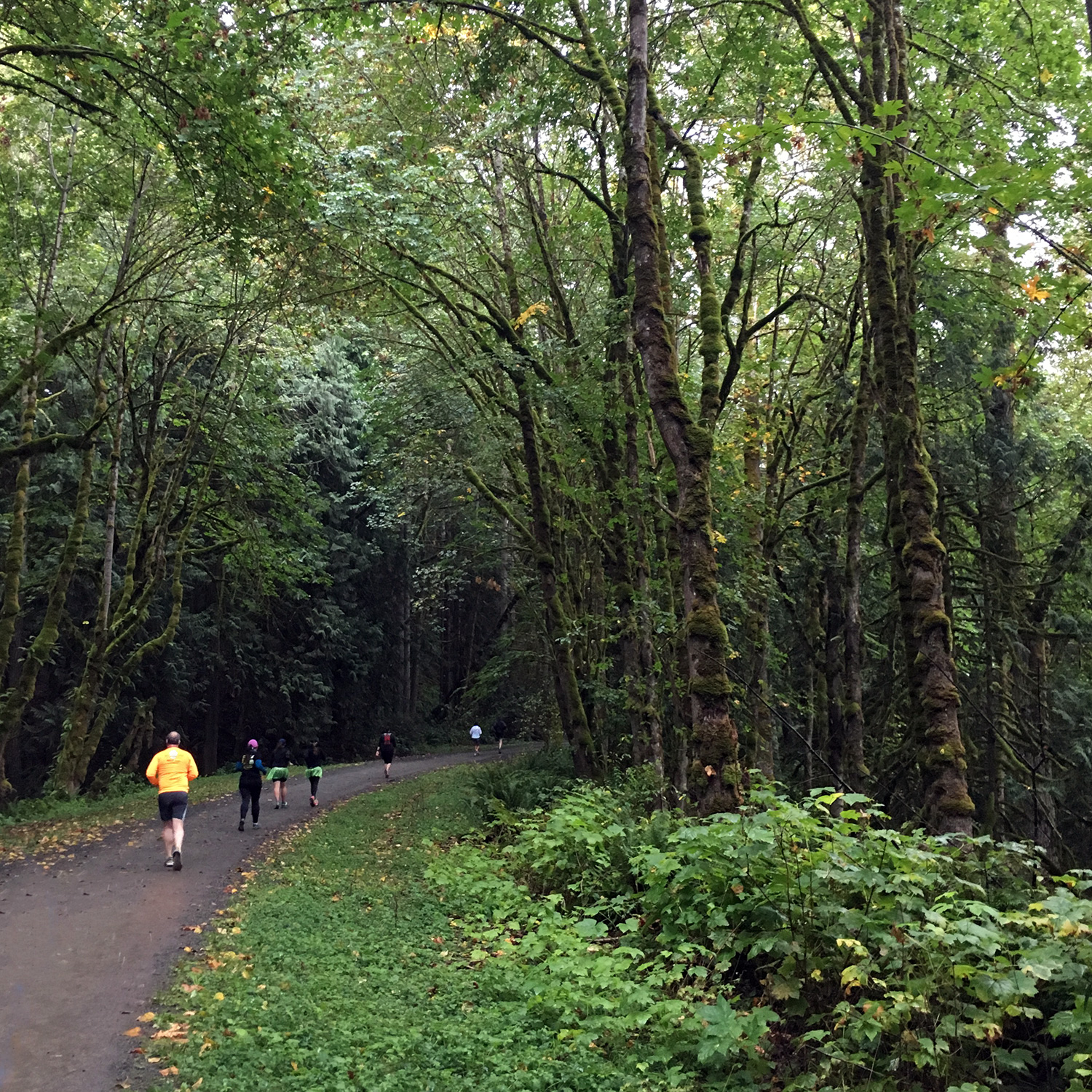 Snoqualmie Valley Trail